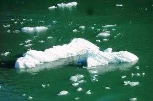 Alaskan water